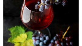 spanish-school-event-wine